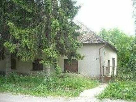 2 Hektar Grundstück mit ren. Bed. Haus in Ungarn