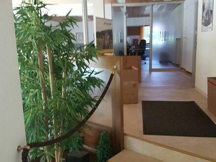 Büro,Galerie, Spielothek, Wettbüro, Schulung, Freiberufler, Praxis
