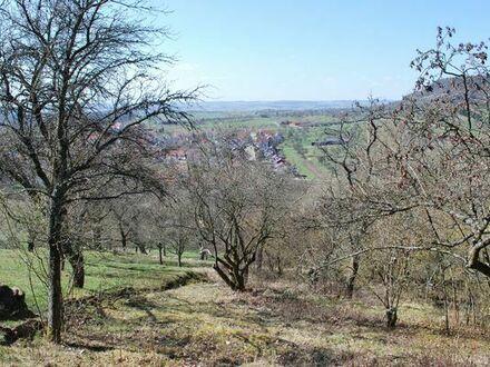 Idyllisches Grundstück in den Weinbergen