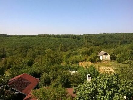 Ungarn, bei Heviz! Zwei-Familien-Haus mit Pool, unverbaubarer Panoramablick, inkl. Sauna uvm.!