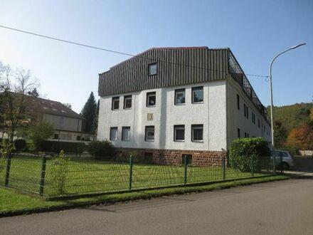 Eigentumswohnung 85 qm in Ludwigswinkel (Pfalz)