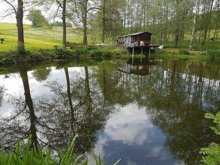Teiche in 09235 Burkhardtsdorf zu verpachten für 550,- EUR pro Jahr