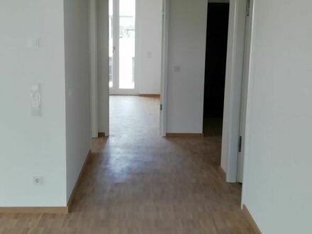 Exkl. 3,5 ZKB Penthouse in Speyer direkt am Rhein ab 1.9.2019