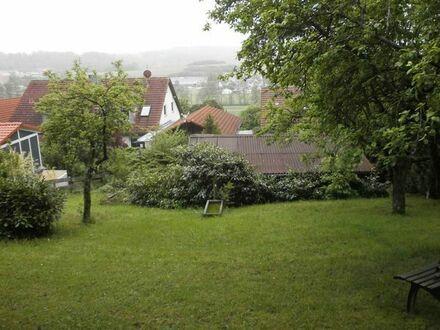 Grundstück mit Gartenhaus eingewachsen Am Bocksberg