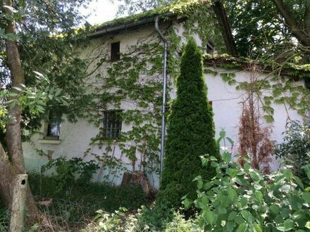 Bau-Grundstück 565 qm Donauwörth-Riedlingen m. Einfamilien-Haus