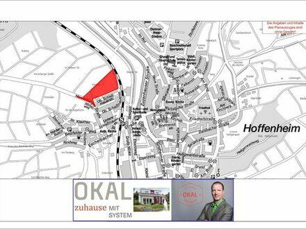 Neues Baugebiet in Sinsheim /Hoffenheim mit OKAL-Haus Projektion