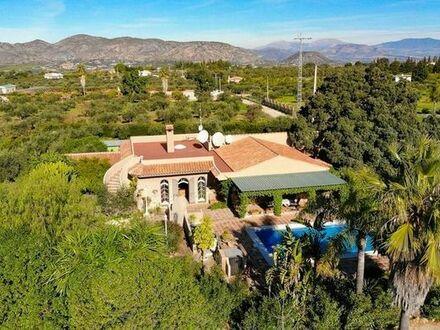 Biete 4600 qm Grundstück mit 2 Häuser und 2 Apartments & Swimming Pool