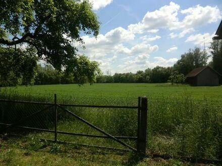 Top Gepflegtes Anwesen mit ca. 8.000 m2 Grund Nähe Eichendorf