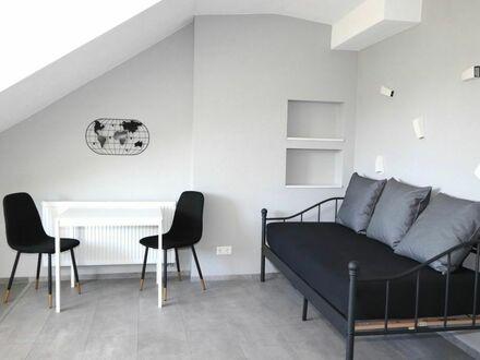 helles modernes 2 Zimmer Apartment