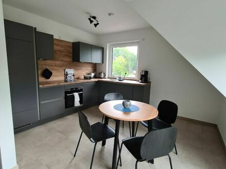 High Class Apartment elbe2