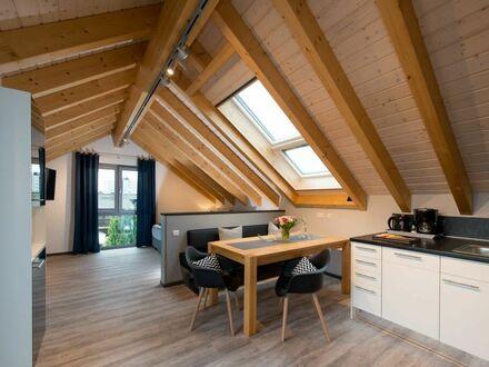 "Amazing Serviced Apartment ""Dach-Loft"""