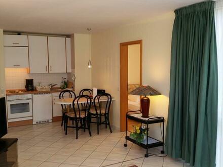 Gemütliches Apartment (1)