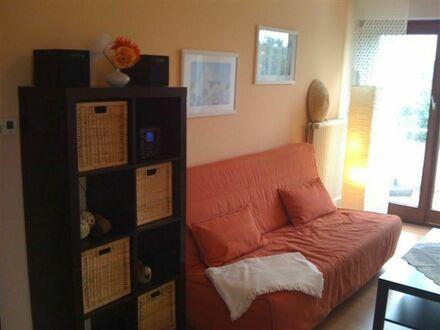 Gemütlich eingerichtetes Apartment