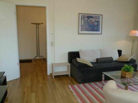 Schönes und sonniges 2-Zimmer Apartment