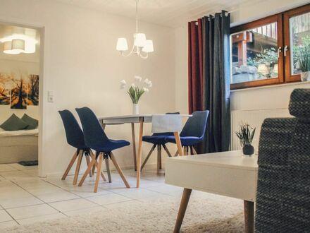 Moderne und freundliche Souterrain-Wohnung für bis zu 3 Pers. zwischen Karlsruhe und Rastatt