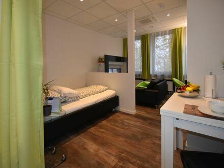 Großes Business-Apartment in Frankfurt