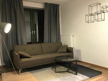 Voll möblierte, kern sanierte Wohnung in Hamburg-Borgfelde