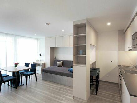 1 Zimmer Apartment im Zentrum von Stuttgart