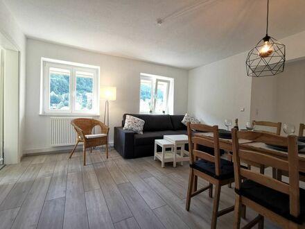 Apartment Flussufer Altstadt - Top Lage neben Heidelberg