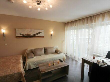 Modernes 1-Zimmerapartment Eschborn