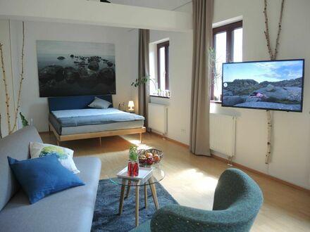 Design Loft-Apartment in Business WG inmitten der Altstadt von Frankfurt-Höchst mit geteilter Küche