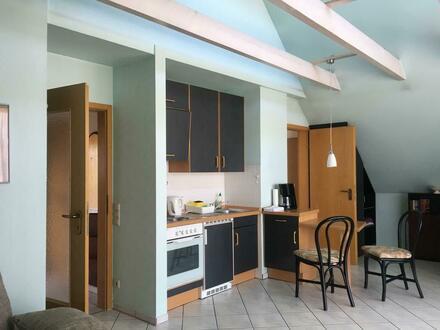 Freundliches Apartment (7)