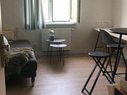 PREISREDUZIERUNG 30% Helle supergemütliche 1-Zimmer Wohnung mit Gemeinschafts Terrasse