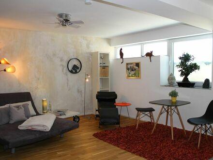 1 Zimmer Wohlfühl-Appartement