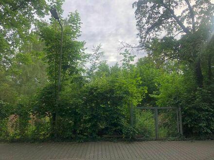In ruhiger Lage liegt dieses sonnige Grundstück unbebaut und eben.