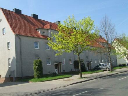 neu sanierte 3-Raum Wohnung mit Gartenpartie u. PKW-Stellplatz auf dem Hof