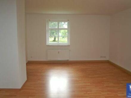 Sehenswerte Wohnung mit Balkon, Laminat und Wohnküche!