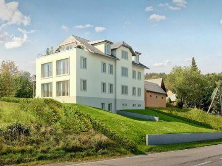 Vollständig saniert - 4 Räume / Penthouse mit herrlicher Dachterrasse und Blick ins Grüne!