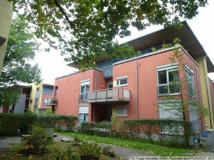 Großzügige 1-Zimmer-Wohnung mit Terrasse und EBK