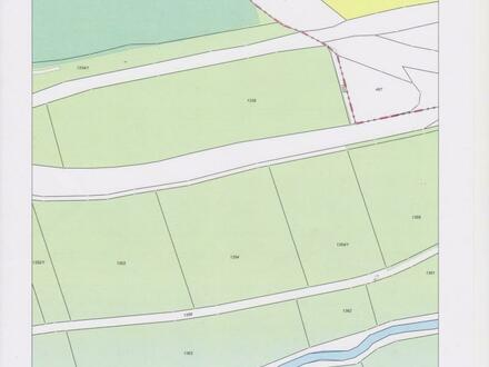 Ochsenwiese zu verkaufen, zwischen Adelsdorf und Wilhermsdorf