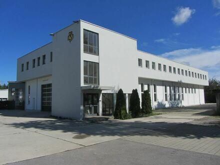 Sehr gut nutzbare und große Halle, optional Freifläche und Büros im OG