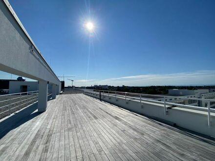 ERSTBEZUG, provisionsfrei: sofort verfügbare ca. 503qm, flexible Bürofläche mit Dachterrassennutzung