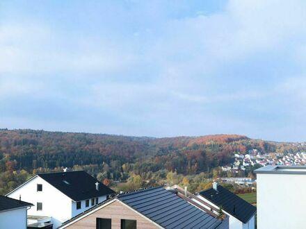 Blaustein SCHÖNER WOHNEN mit Zukunftssicherheit! Neubau 2-Zi.-Penthouse mit Panoramablick