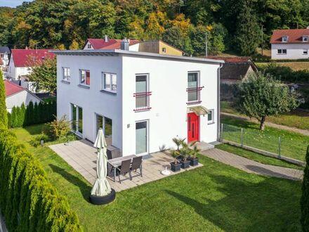 Gepflegtes und modernes Familienheim in Biberach Randlage