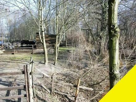 ca. 8220 qm eingezäuntes Grundstück , das ideale Domizil für Hobbytierhaltung und Pferde