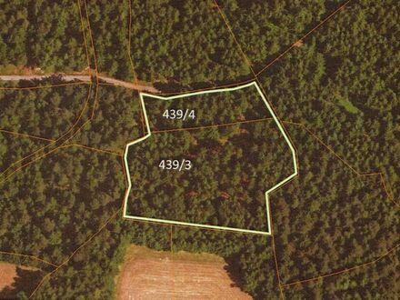 Sehr gut gepflegter Wald nähe Kollnburg zu verkaufen