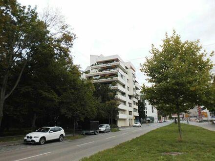 ***Große, individuelle 2-Zimmer-Mietwohnung mit großer Terrasse unmittelbar am Stadtpark***