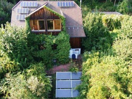 Hohenstadt am Waldrand! Außergewöhnliches Einfamilienhaus mit großem Grundstück und Doppelgarage!