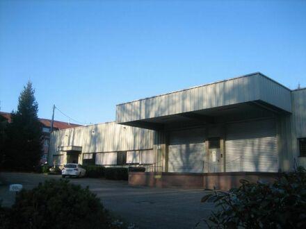 Lagerhalle mit Büroräumen und großer Freifläche