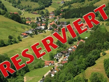 Gemütliche 1 Zimmer Ferienwohnung im Herzen des Schwarzwaldes