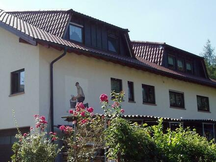 Viel, viel Platz! XXL-DG-Wohnung NÄHE Eberbach - ruhig und idyllisch ...