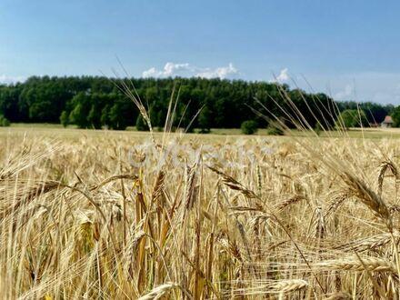Ruhig gelegenes Grundstück in der Gemeinde Nahrendorf OT Pommoissel