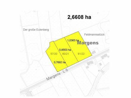 2,6608 ha Grünland in Margens (Gemeinde Stedesdorf)