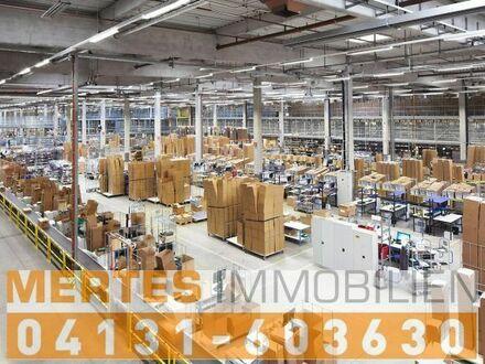 Teilbare Logistikanlage mit 38 Ramentoren und 3 ebenerdigen Rolltoren in Lehrte zu mieten.