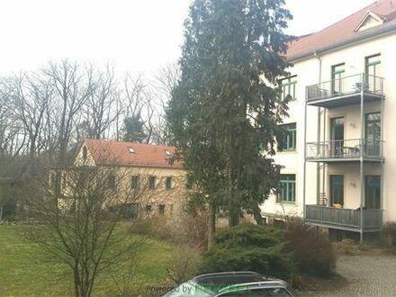 Traumhafte Galeriewohnung in Lindenau!