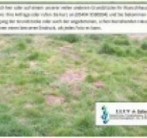 Ländliche Lage, Grundstück wird in 2019 erschlossen
